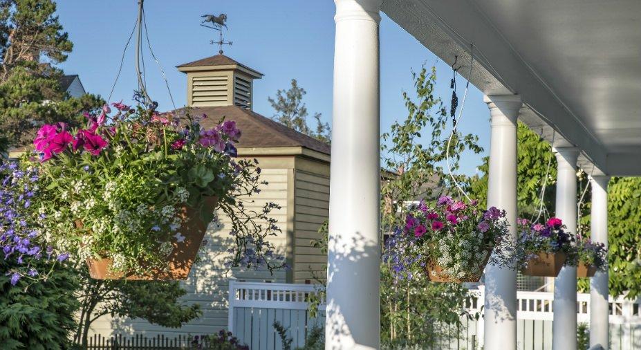 Porch Flowers-gallery_mini